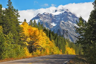 Autumn in Canada. The road abruptly turns