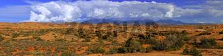 Panoramaaufnahme ' Petrified Dunes' vor La Sal Mountains  bei So