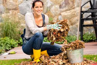Woman putting leaves in bucket autumn gardening
