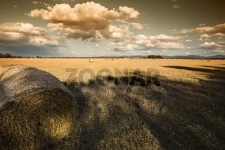 Hay Bales in the countryside on a perfect day dusk
