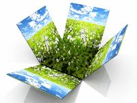 prairie  in the box