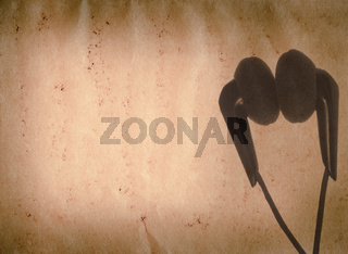 music earphone old grunge paper texture