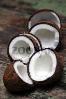 Cocosnuss Frucht auf der Insel Ko Tao im Golf von Thailand im Suedwesten von Thailand in Suedostasien.
