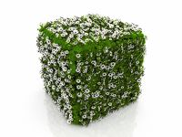 cube grass and flowers