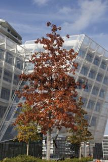 Unilever Haus in der Hamburger Hafencity, Deutschland