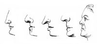 Many different human noses, people picture from the 19th Century