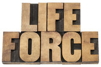 life force in wood type