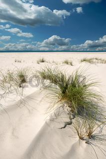 Nordsee - Insel Amrum