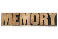 memory in wood type