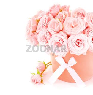 Pot of pink roses