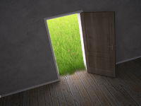 door leading to a green meadow