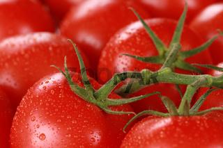 Nahaufnahme von reifen Tomaten