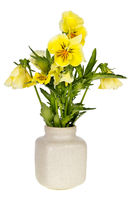 minimalistic  bouquet  - yellow Pansies