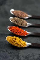 4 Spices on spoons