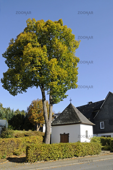 Kreuzkapelle chapel, Drolshagen, Sauerland region, North Rhine-Westphalia, Germany, Europe