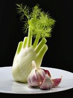 Fennel and Garlic