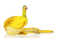 Peel of banana