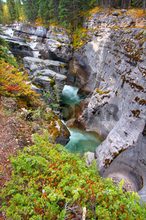 Maligne Canyon Jasper National Park