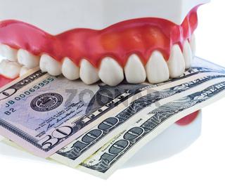 Zahnmodell mit Dollarscheinen