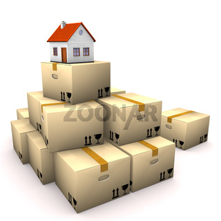 House Moving Boxes