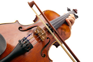 Playing Violin on white backround
