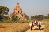 On the way to the pagoda, Myanmar