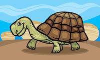 funny turtle cartoon illustration