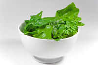 raw spinach leaves in a white bowl with white back
