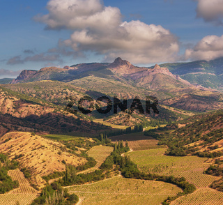 Fields in Crimea