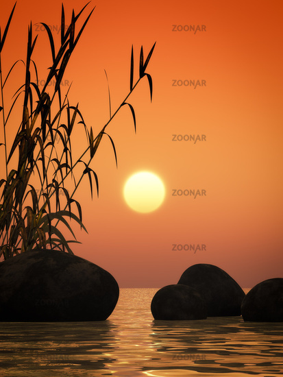 ocean sunset bamboo and stones
