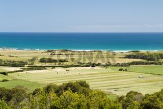 Coastal Farming