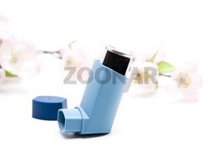 Inhaler mit Blütenzweig