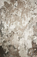 grunge wall background texture