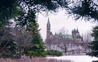 Evergreen Parliament