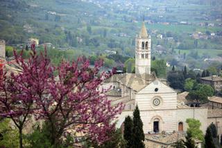Kirche Basilica di Santa Chiara