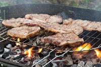 151 grillfleisch.jpg