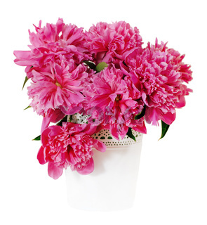 Pink peony flowers in white vase
