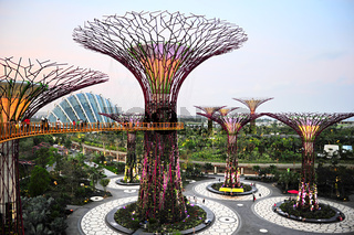 Gardens by the Bay at dusk