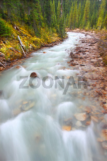 Little Yoho River Rapids Canada