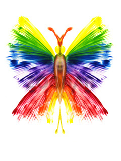 Watercolor the butterfly in the form of a rainbow
