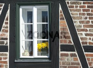 Fenster mit Blumenvase im Fachwerkhaus, Aussschnitt