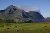 Mountain with clouds on Lofoten