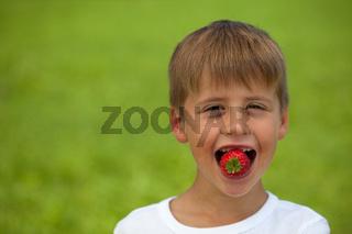Junge isst eine Erdbeere