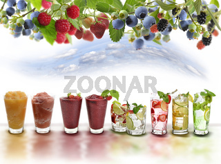 Fruit Drinks Assortment