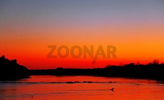 Sonnenaufgang am Kafue River, Kafue Nationalpark, Sambia; Sunrise at Kafue River, Zambia