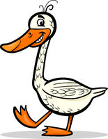 goose farm bird cartoon illustration