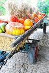 Erntewagen zum Erntedankfest