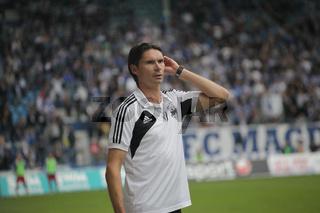 Cheftrainer Thomas Brdarić(TSG Neustrelitz)Regionalliga-Spiel 1.FC Magdeburg-TSG Neustrelitz 29.9.13
