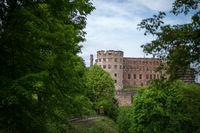 Schlossruine Heidelberg