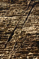 Sandstein im Elbsandsteigebirge
